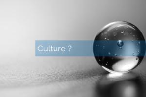 Par quel bout aborder la transformation digitale ? épisode 1: par la culture ?